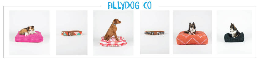 FillyDogCo